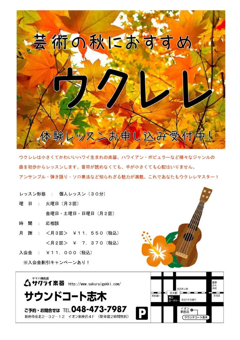 芸術の秋におすすめ🍁レッスン